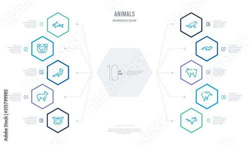 animals concept business infographic design with 10 hexagon options Wallpaper Mural