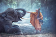 canvas print picture - Thailand Buddhist monks with elephant is traditional of religion Buddhism on faith Thai people