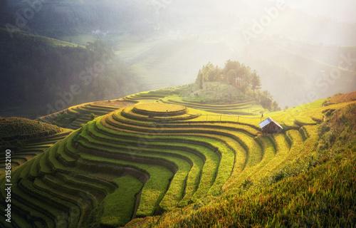 Leinwand Poster Rice fields on terraced of Mu Cang Chai, YenBai, Vietnam