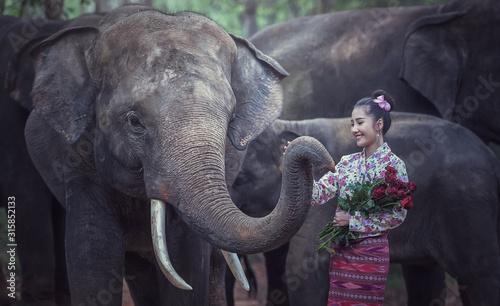 Photo  Thai Traditional fashionable lady with elephant