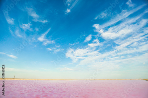 Fotografie, Tablou  Brine and salt of a pink lake, colored by microalgae Dunaliella salina, famous for its antioxidant properties, enriching water by beta-carotene, used in medicine, dermatology and spa