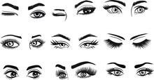 Eyes Eyelashes Eyebrow Lashes ...