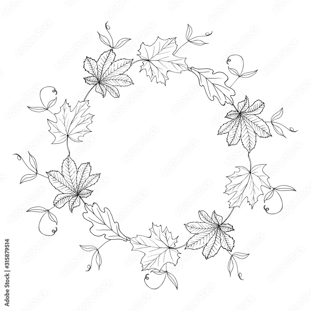 Fototapeta Monochrome wreath of autumn leaves. Round frame with leaves for fashion, greetings, background for save the dates. Black and white. Vintage. Vector.