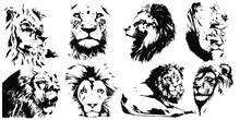 Hand Drawn Lion Head. Vector I...