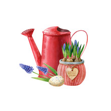 Red Watering Can, Blue Muscari...