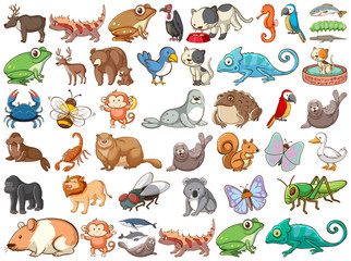 Large set of wildlife with many types of animals land and sea