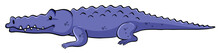 Blue Crocodile On White Backgr...
