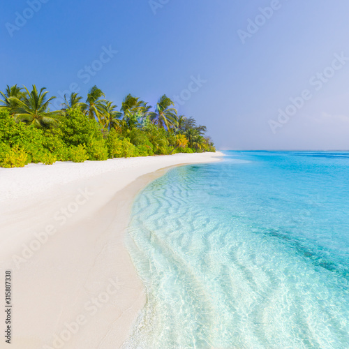Fotografie, Obraz  Tropical beach scene, blue sea and palm trees and white sand, summer vacation an