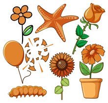 Set Of Flowers And Other Things In Orange Color
