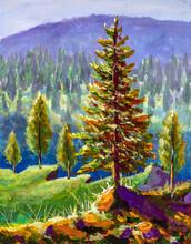 Big Pine On Background Of Sunn...