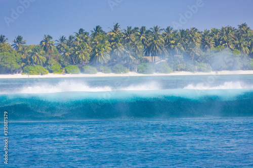 Fotografie, Obraz  Tropical island view with wave splashing, palm trees and deep blue sea view