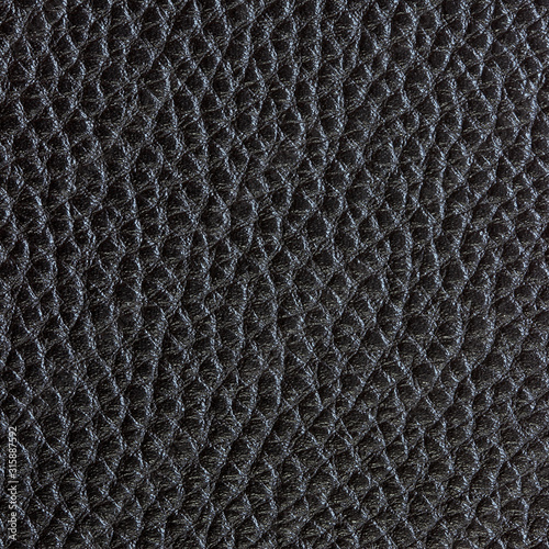 Vászonkép black leather texture background
