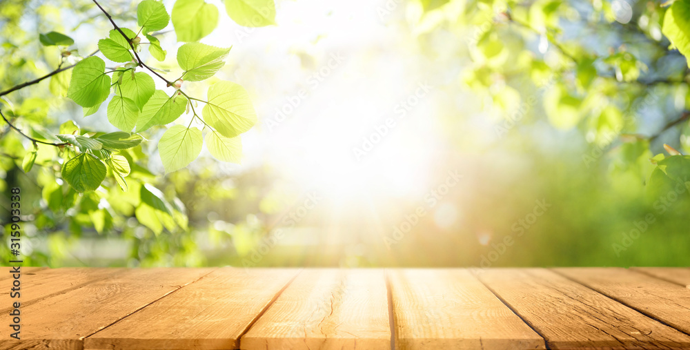 Fototapeta Spring beautiful background with green juicy young foliage and empty wooden table in nature outdoor. Natural template with Beauty bokeh and sunlight.