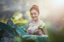 Asian Woman Harvest Lotus Flow...