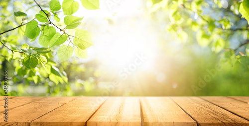 Obraz Spring beautiful background with green juicy young foliage and empty wooden table in nature outdoor. Natural template with Beauty bokeh and sunlight. - fototapety do salonu