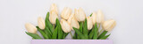 Fototapeta Tulipany - top view of tulips in violet shopping bag isolated on white, panoramic shot