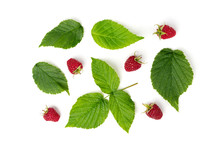 Raspberry Isolated On White Ba...