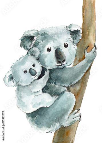 Fototapeta cute koalas mom and baby on an isolated transparent background, watercolor illus