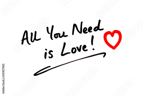 All You Need Is Love Tablou Canvas