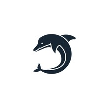 Dolphin Creative Icon. From Ec...