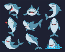Cute Funny Shark Flat Vector I...