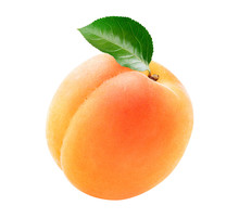 Single Fresh Apricot With A Gr...