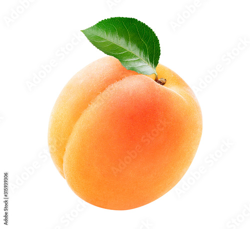 Fényképezés Single fresh apricot with a green leaf isolated on white background