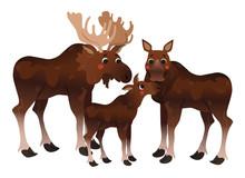 Cute Cartoon Moose Family Vect...