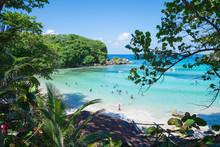 Shore Of Winnifred Beach, Jama...