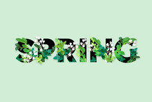Spring Floral Eco Design With White Lily Flowers, Green Leaves, Succulent Plants And Integrated 3d Typography. Vector Template For Poster, Flyer, Banner Or Card. Illustrated Nature Background.