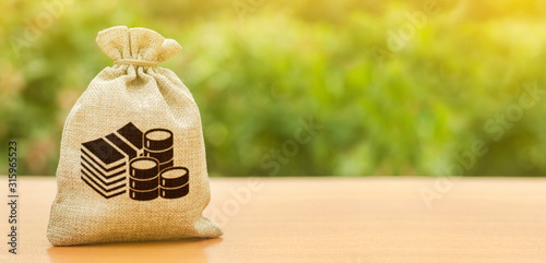 Fototapeta Money bag on nature background. Economics, salary. Business and industry, economic processes. Finance and budgeting, investments, bank deposit interest rates. Profit, income, earnings obraz