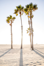 Later Afternoon At Venice Beach, California.