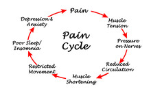 Eight Steps In Cycle Of Pain