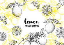 Lemon Hand Drawn Package Desig...