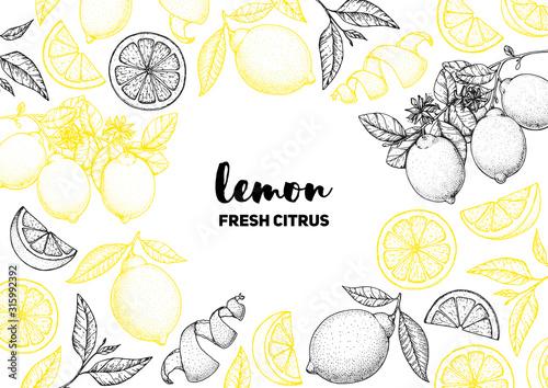 Lemon hand drawn package design Poster Mural XXL
