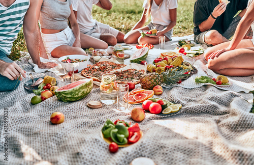 Group of friends having picnic on green meadow Fototapeta
