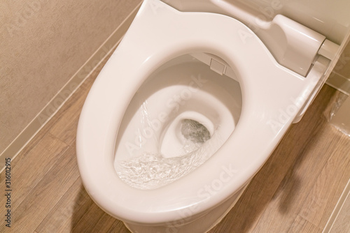 Fotografía 水洗トイレの水を流す