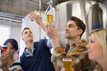 Friends Beer Tasting At Brewery