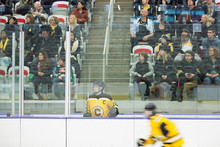 Female Ice Hockey Player In Penalty Box Crowd