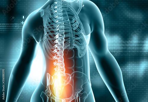 Fotografía  Male anatomy, back pain, Athletic Orthopedics on blue scientific background