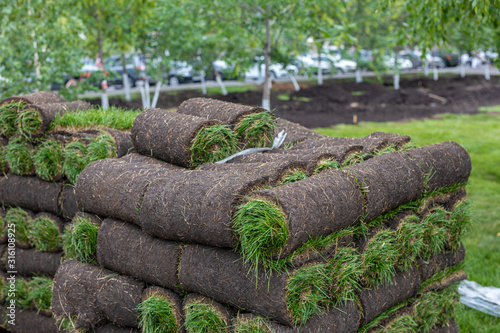 Stack of turf grass rolls for lawn. roll of sod, turf grass roll for landscaping. Installation of modern landscape and environment.