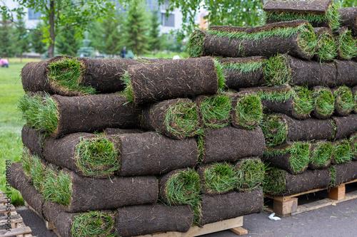 Fotografía turf grass rolls for lawn