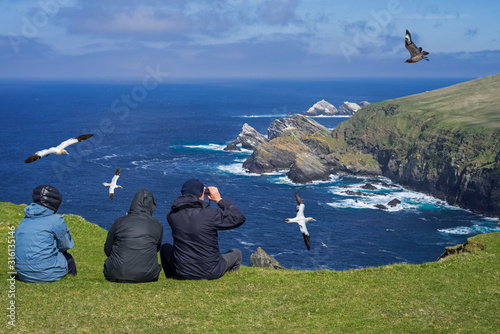Birdwatchers watching seabirds at Hermaness, Shetland, Scotland, UK Wallpaper Mural
