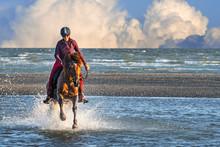 Female Horse Rider On Horsebac...