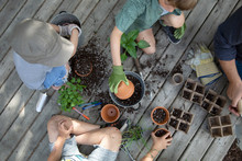 Overhead View Brothers Potting Plants On Deck