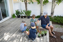 Father And Sons Potting Plants...