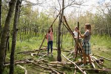 Tween Girls Making Teepee In Woods With Logs