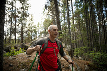 Mature Man Hiking In Forest