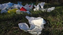 Diapers And The Environment. D...