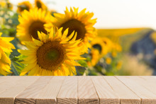 Sunflower Seeds In Burlap Bag On Wooden Table With Field On The Background. Photo With Copy Space Area For A Text